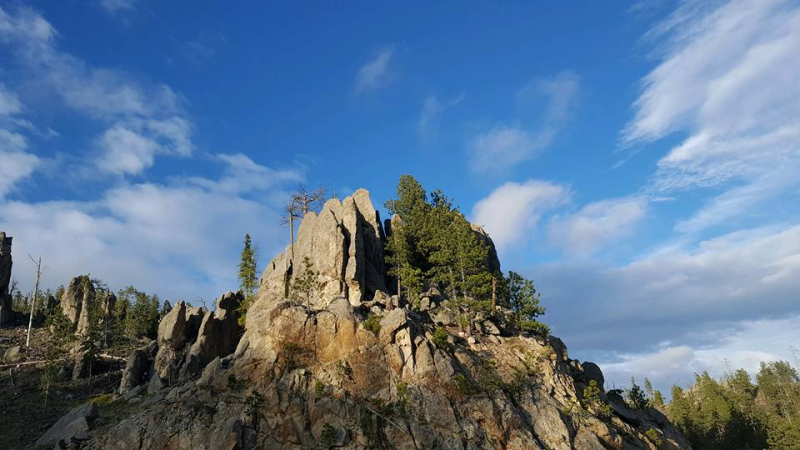 Needles highway 2