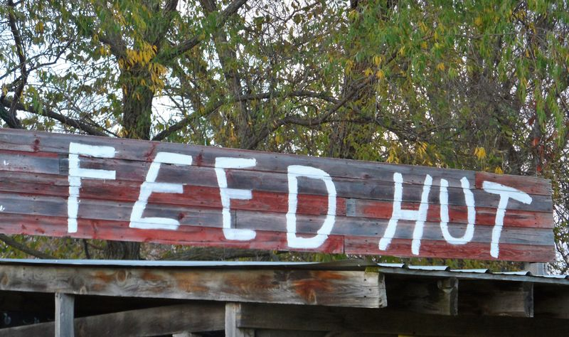 Feed hut (2)